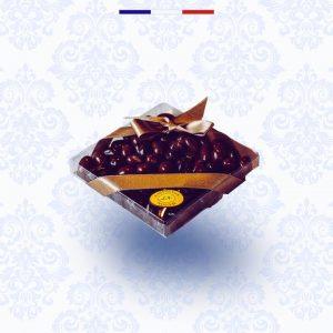 Chocolate coated berries